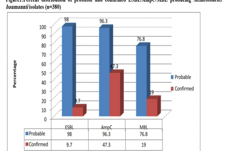 Incidence of ESBL, AmpC ß-lactamases and Metallo ß-lactamase producing Acinetobacter baumanniiin intensive care units of a tertiary care hospital from north India