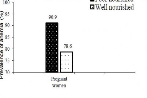 Nutritional status in pregnant women