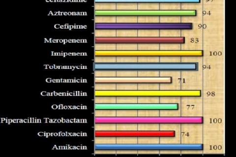Antibiotic susceptibility pattern of Pseudomonas (in %) Discussion