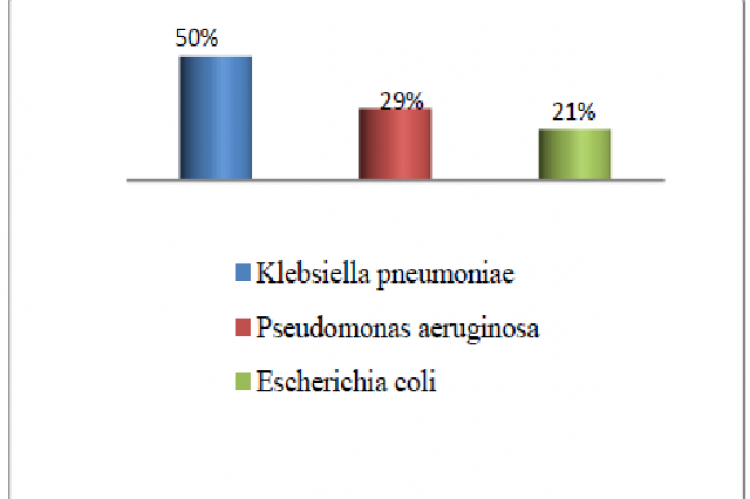 Prevalence of Bacterial species in fruits
